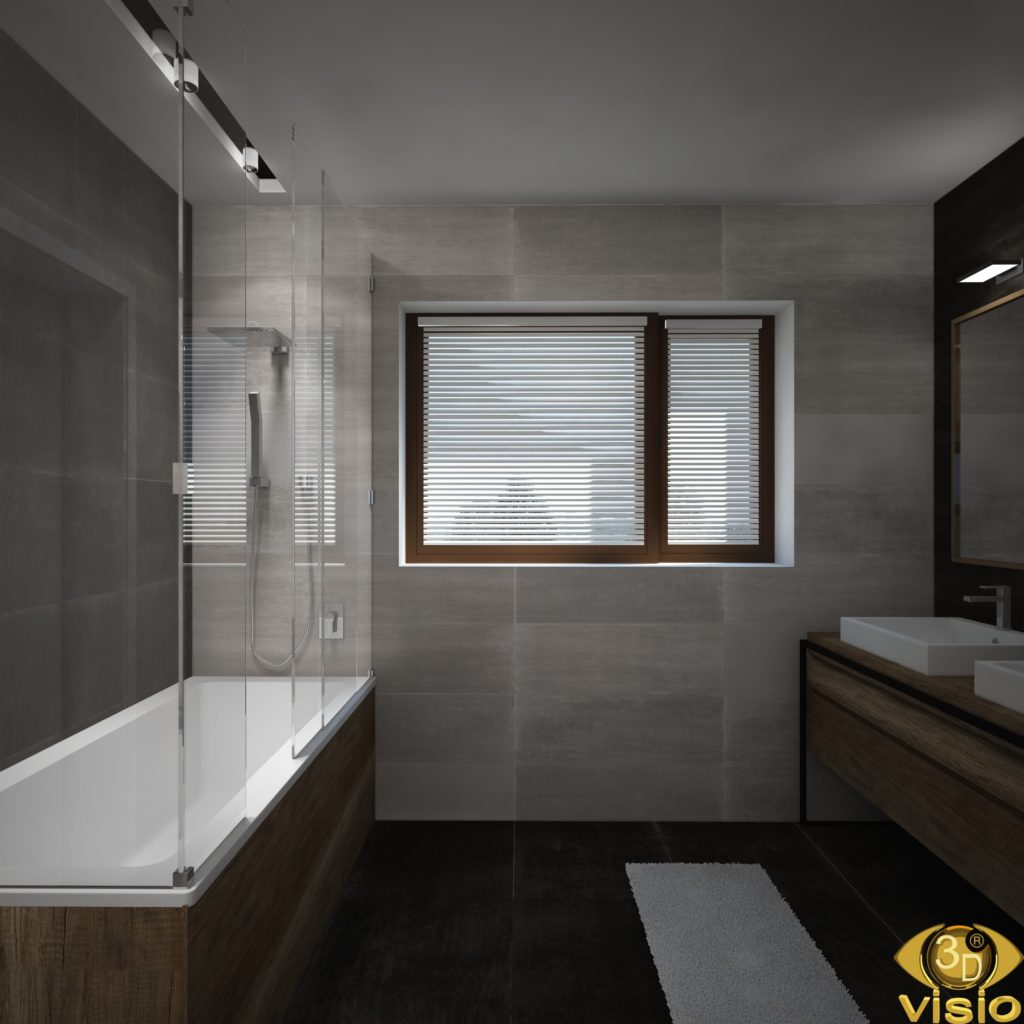 3D visualization of the bathroom in the house, Austria